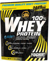 ALL STARS 100% Whey Protein - 500g Beutel